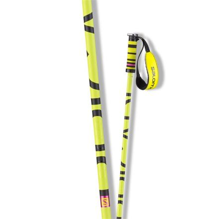 Brigade Ski Poles /Black/Yellow