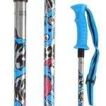 Sprout Adjustable Ski Poles - Big Boys' /Silver